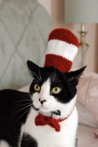 cat in the hat costume kitty