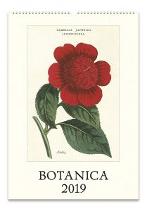 cavallini papers & co botanica 2019 calendar