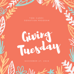 Give Back Now For Giving Tuesday & Shop For A Good Cause